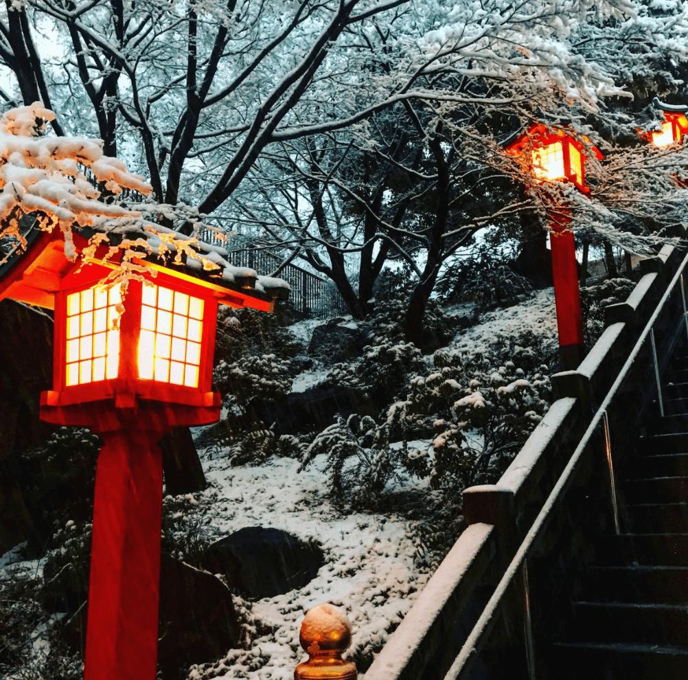 東京 大雪
