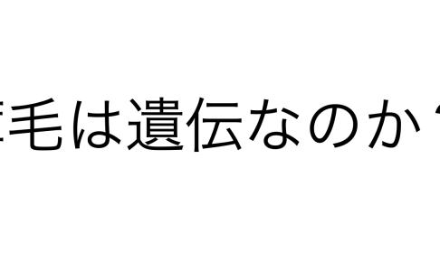スクリーンショット 2018-09-16 16.13.25