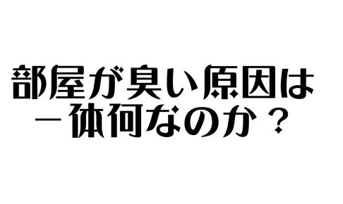 スクリーンショット 2019-02-07 18.52.13