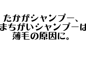 スクリーンショット 2019-08-13 19.48.44