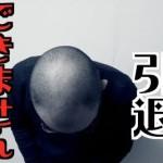 hqdefault (6) (1)